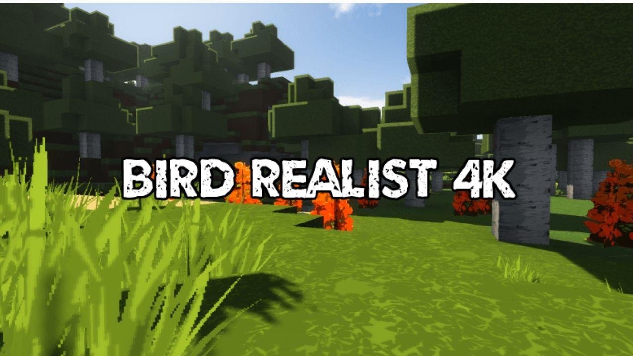 Bird Realist 4k Resource Pack