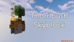 Thornbush Skyblock Map Thumbnail