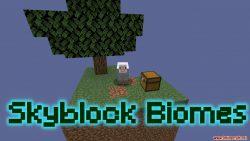 SkyBlock Biomes Map Thumbnail