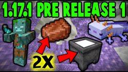 Minecraft 1.17.1 Pre-Release 1